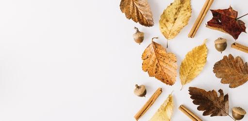 Zo breng je de herfst in huis!