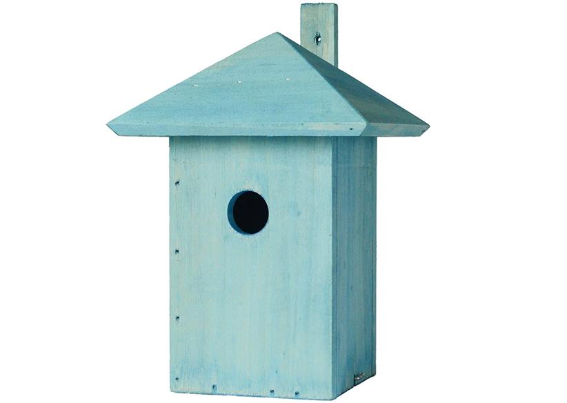 Lente vogelhuisje