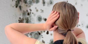 6 tips om schimmel te voorkomen