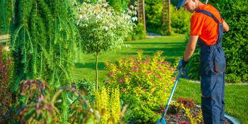 5 tips om je tuin zomerklaar te maken
