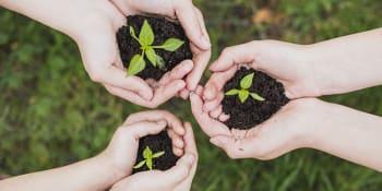 Waarom kiezen voor een duurzame lifestyle slim is