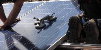 96 op de 100 daken nog beschikbaar voor zonnepanelen