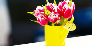10 tips om de lente in huis te halen!