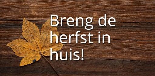 Breng de herfst in huis!