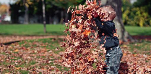 7 tips om uw huis herfstklaar te maken