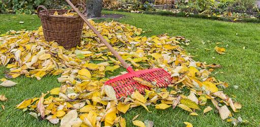 Bereid je tuin voor op het najaar