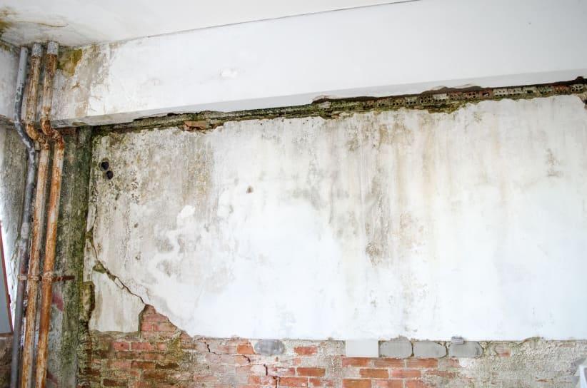 Kelderdichting is de oplossing tegen vochtige muren in de kelder