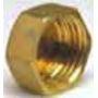 BOUCHON 300 G LAITON F 1 photo du produit