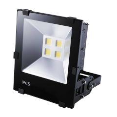 CLOUD PROJ LED AUTO 10W 4000K photo du produit