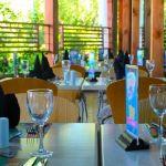Restaurante El Olivillo