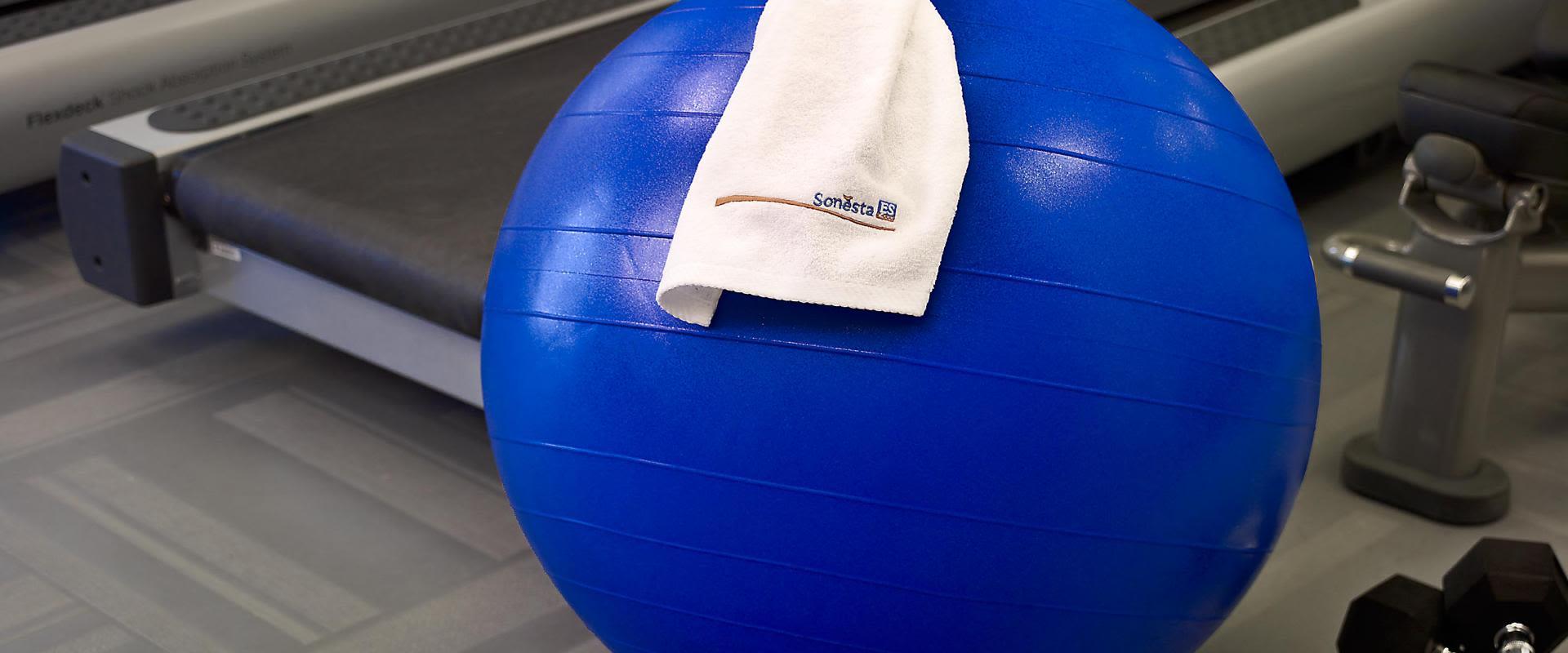 The Mat - Fitness Ball