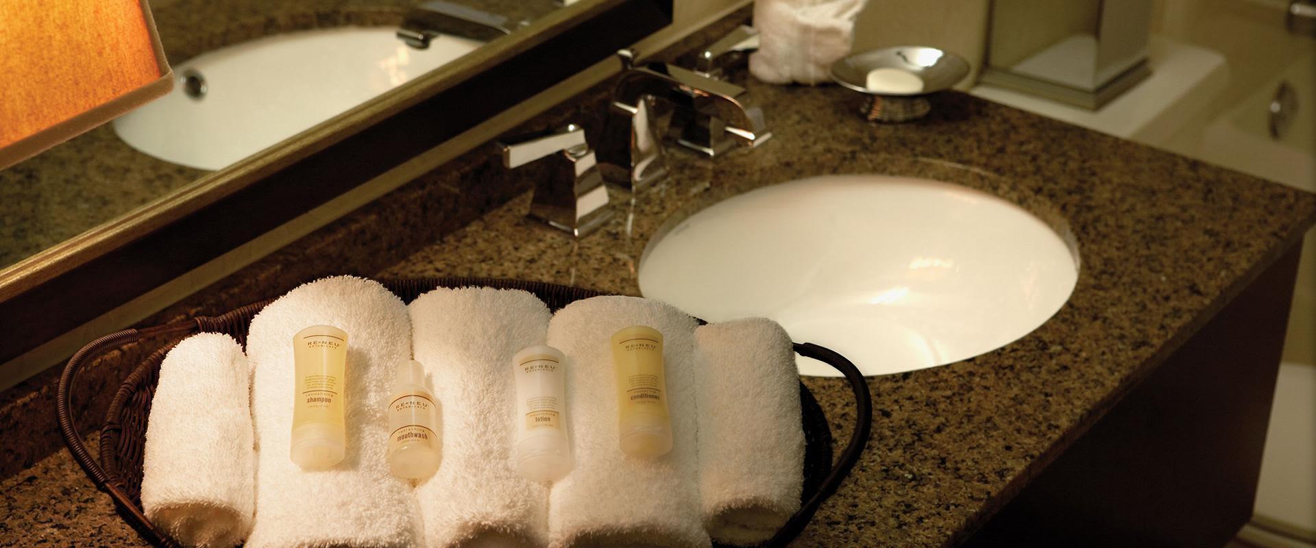 Atlanta Airport Hotel Guest Room Bathroom