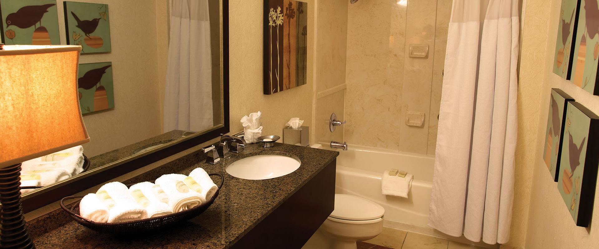 Atlanta Airport Hotel Guest Bathroom Vanity