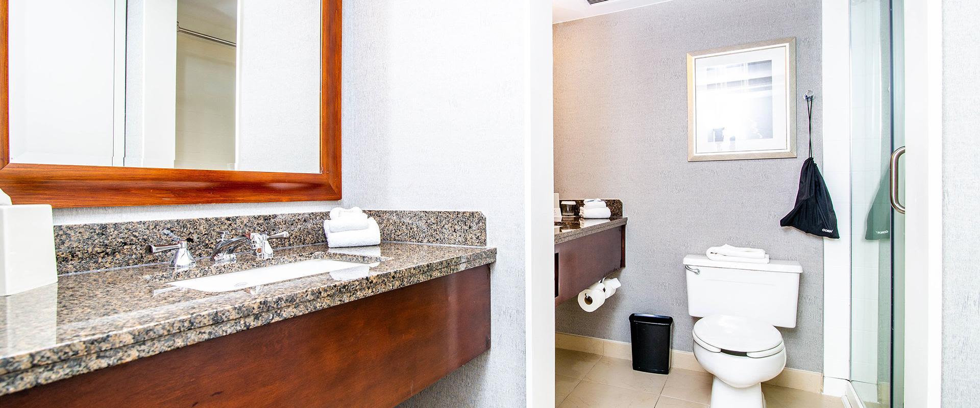 Charlotte Hotel Guest Bathroom Double Sinks