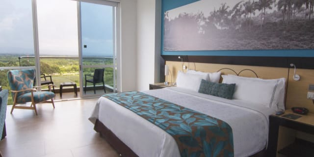 Sonesta Hotel Pereira - undefined