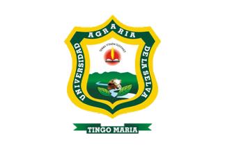 UNAS - Universidad Agraria de la selva