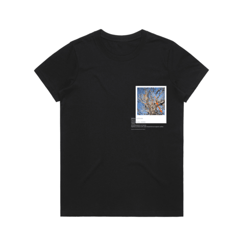 Hands All Over 02   Women's 100% Organic Cotton Gallery T-shirt in Black / XXL by Serap Osman