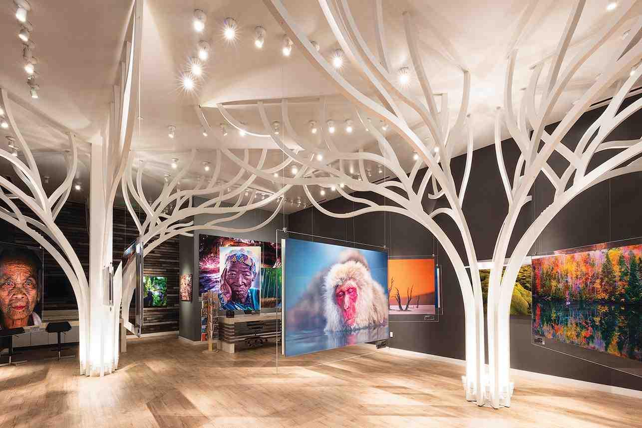 Andrei duman gallery 2
