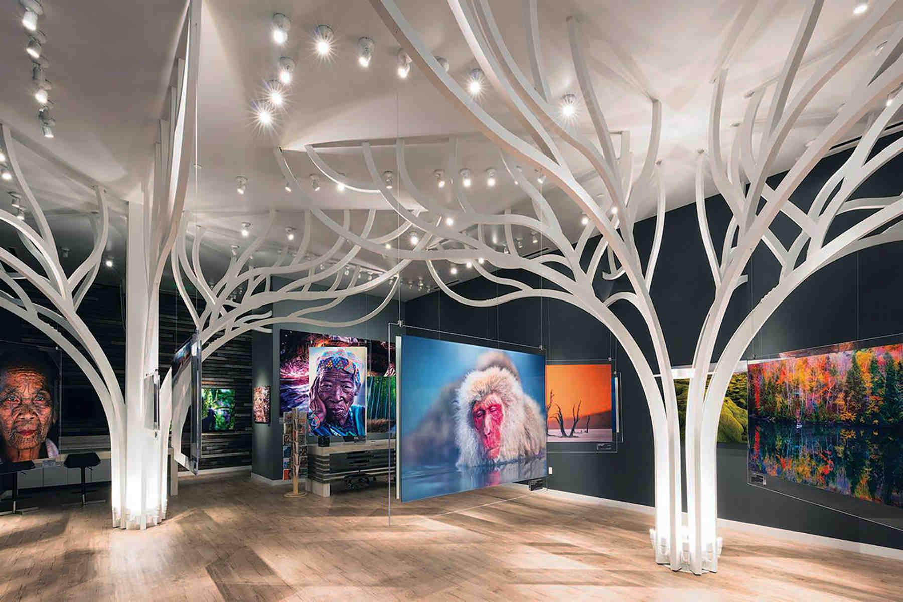 Andrei duman gallery 1 1