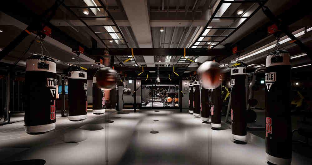 Mmf gym 1