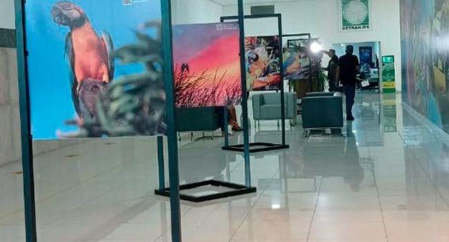 Exposição destaca fotógrafos regionais