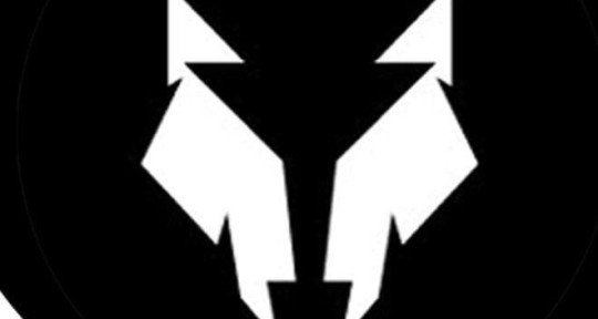 Photo of Night Wolf