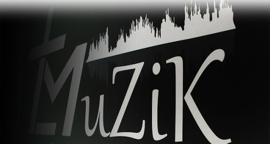 Music Producer & Mixing Artist - True Life Muzik Recording