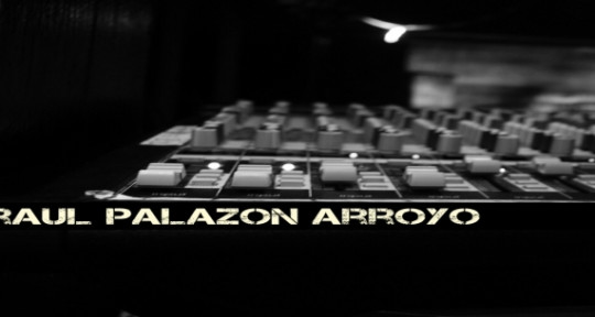 Music Producer - Raul Palazon Sounds