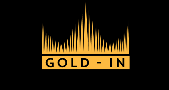 Photo of Gold-In Studios