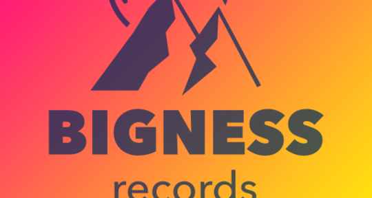 Photo of Bigness Records