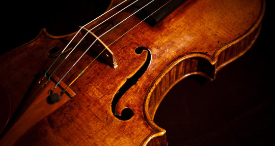 Photo of OrchestralViolinist