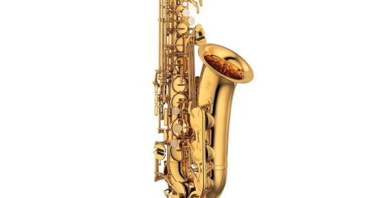 I`m a saxophonist - djmcg