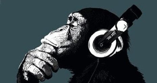Photo of Bad Monkey Music Productions
