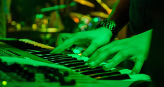 keyboard player, music compose - Alex Budimir