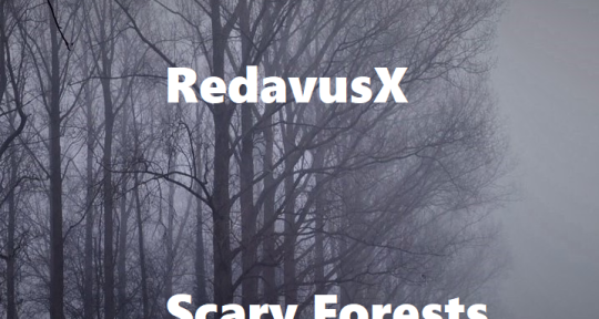 Producer and Pianist - RedavusX