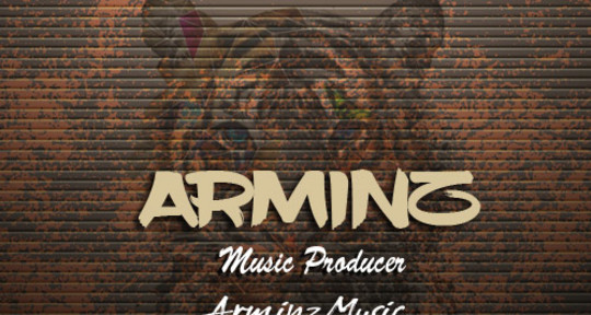 Music producer - arminz