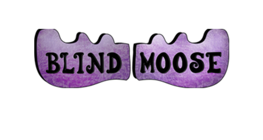 Photo of Blind Moose Studios