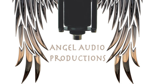 Photo of Angel Audio Productions