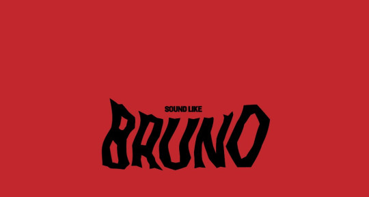 Photo of soundlike BRUNO