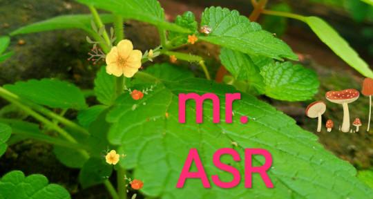 Photo of Mr. ASR