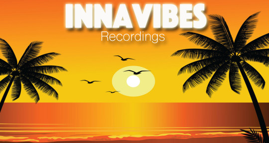 Music producer mix engineer - InnaVibes
