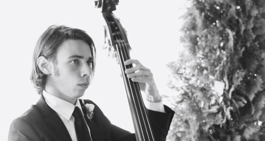Bassist, Upright and Electric - Marcus Buser