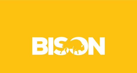 Photo of BISON Productions