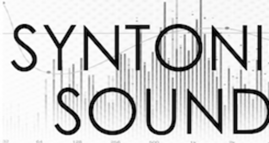 Photo of Syntonic Sound
