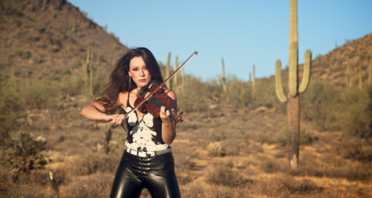 ...Is it a Fiddle or a Violin? - Cassandra Sotos