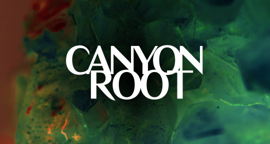 Composition/Production/Mixing - Canyon Root Productions