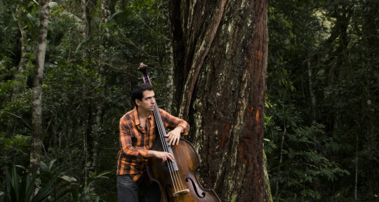 electric/upright bass player - Rodrigo Villa
