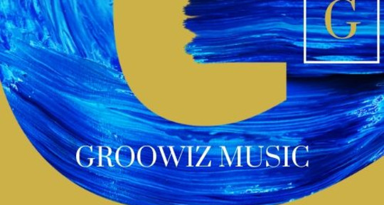 music producer - groowiz music