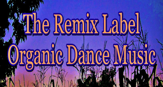 Mixing & Mastering, Releases - The Remix Label