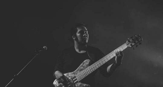 Session Bassist - Harrold Go
